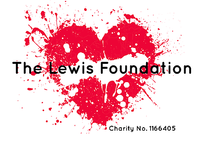 Donate to The Lewis Foundation