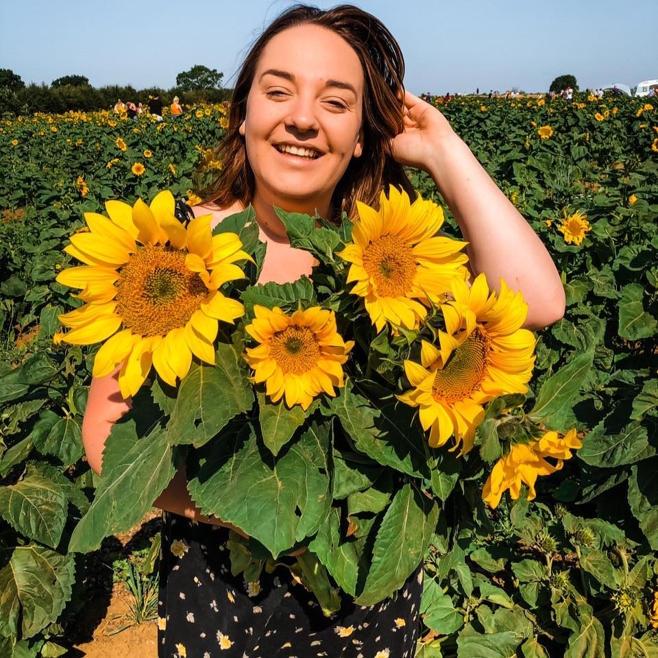 PYO Sunflowers (and other things) in Northamptonshire