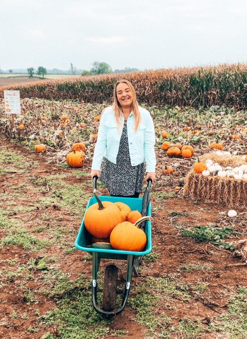 Where To Pick Your Own Pumpkins in Northamptonshire